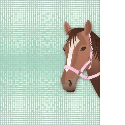 Communie paard meisje roze vormsel 2