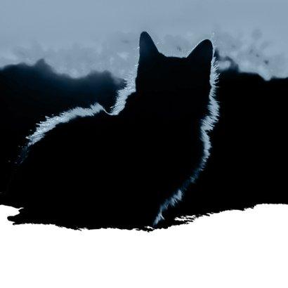 Condoleance Geen gespin geen miauw 2