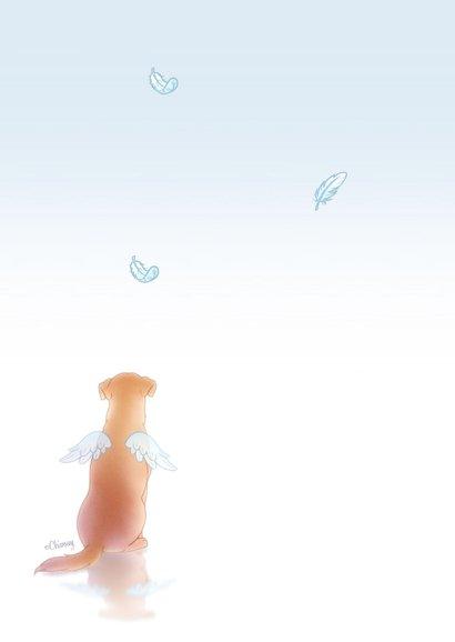 Condoleance hond engel 2