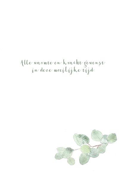 Condoleance kaart met eucalyptus tak - natuur 3