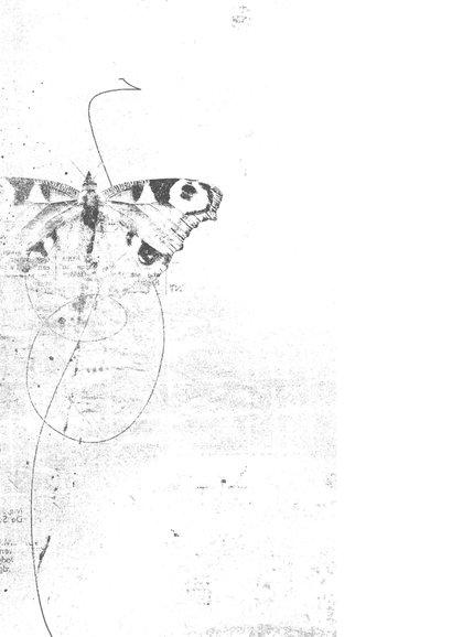 Condoleance kaart vlinder sketch roze 2