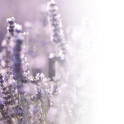 Condoleance - lavendel veel sterkte 2