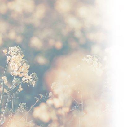 Condoleance - met oprechte deelneming en bloemen  2