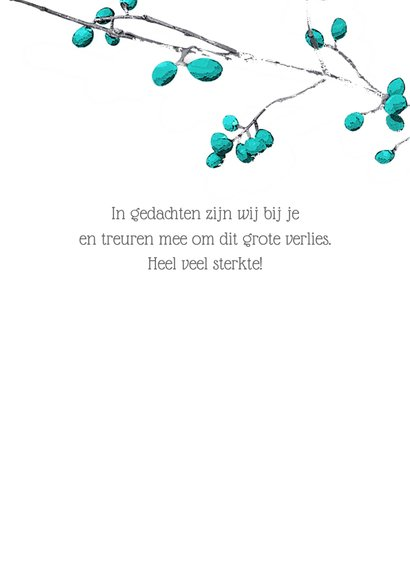 Condoleance sterkte kaart blue berries 3