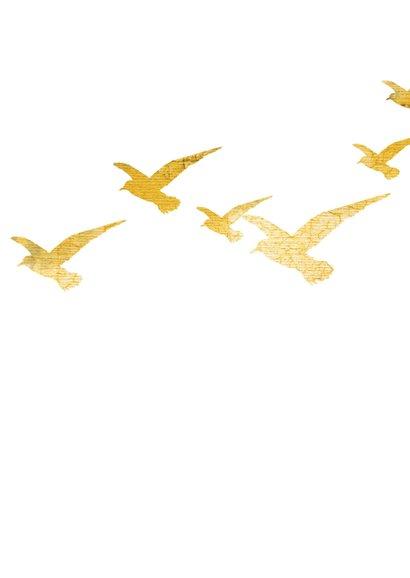 Condoleance sterkte kaart vogel zon 2
