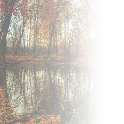 Condoleance - stil herfst veel sterkte gewenst 2