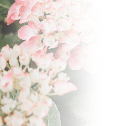 Condoleance - veel sterkte hortensia 2