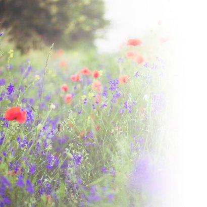 Condoleance - woorden van troost kracht bloemen 2