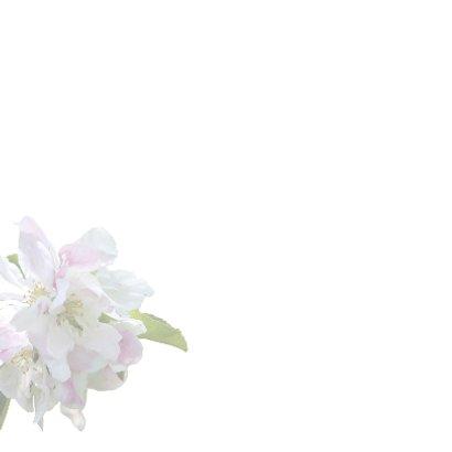 Condoleancekaart bloem sfeervol  2
