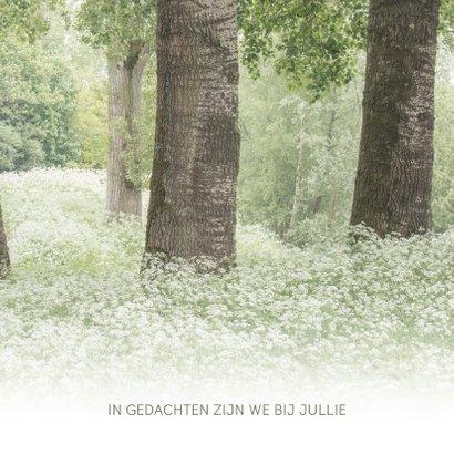 Condoleancekaart met bomen 3