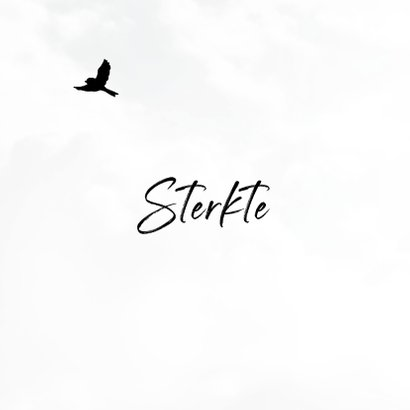 Condoleancekaart met een silhouette van vogels 2