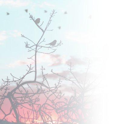 Condoleancekaart vogels boom  2
