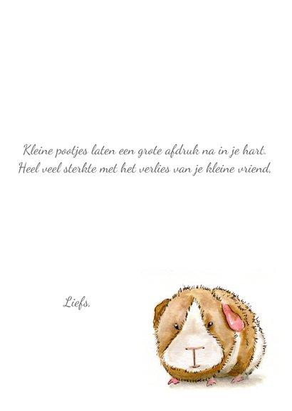 Condoleancekaarten klein huisdier 3