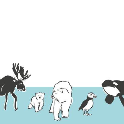 Coole verjaardagskaart dieren Noordpool 2