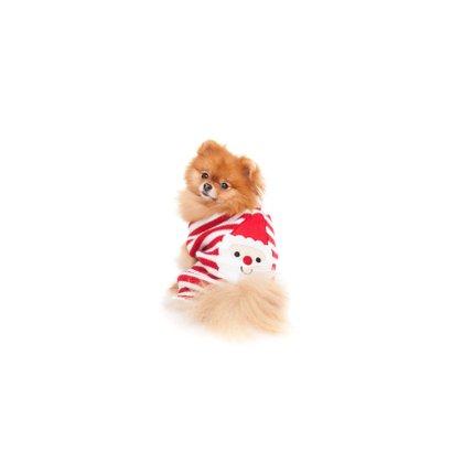 Dieren Kerstkaart - Pomeranian kerstman 2