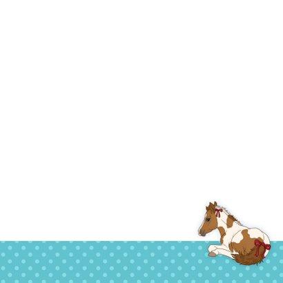 Dieren Paardenkaart Chiwowy 3
