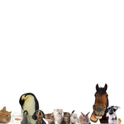 Dierenkaart met allemaal verschillende dieren 2