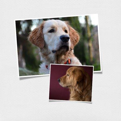 Dierenkaart met eigen foto voor het allerliefste baasje 2