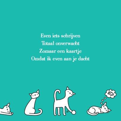 Dierenkaart Poesjes 3