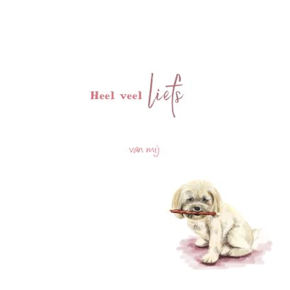 Dierenkaart tekening van een lief hondje 3