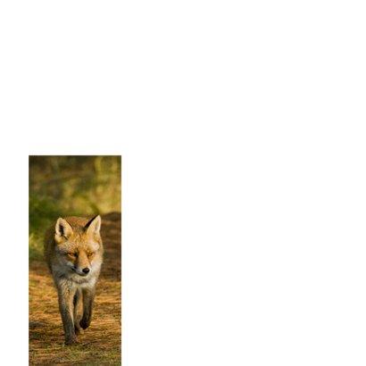Dierenkaart vos loopt naar je toe 2