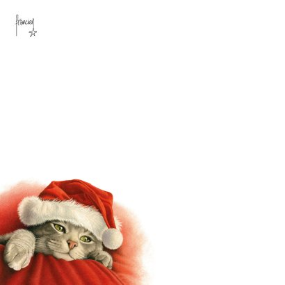 Een dikke kerstknuffel van deze lieve kerstkat 2