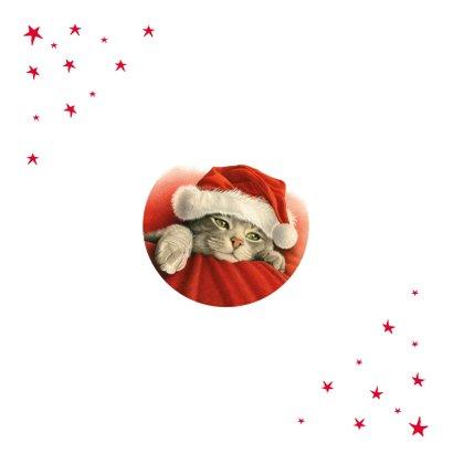 Een dikke kerstknuffel van deze lieve kerstkat Achterkant