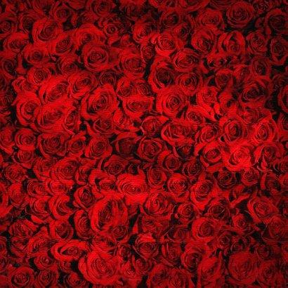 Een romantische anonieme valentijnskaart met rozen  2