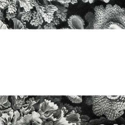 Einladung Hochzeit Timeline Unterwasserwelt schwarz weiß Rückseite
