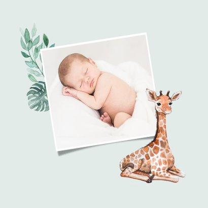 Einladung zur Taufe süße Giraffen und Foto innen 2