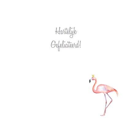 Felicitatie flamingo geboorte 3