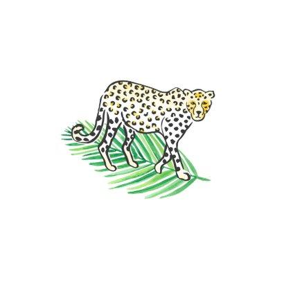 Felicitatie geboorte jaguar 2