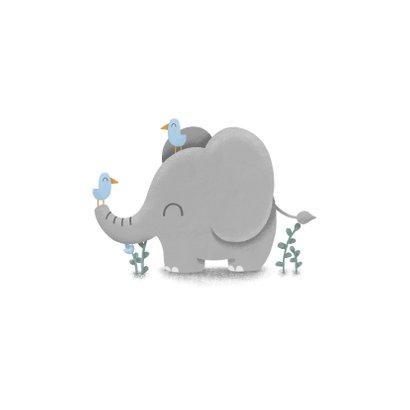 Felicitatie geboorte jongen met lieve olifant en vogeltjes 2