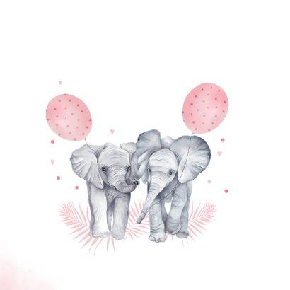 Felicitatie geboorte tweeling meisjes olifantjes 2