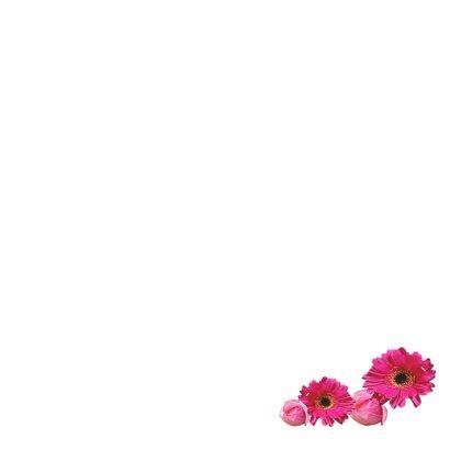 Felicitatie geboortehuisje vogel roze 3