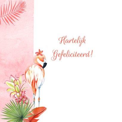 Felicitatie huwelijksjubileum flamingostel 2