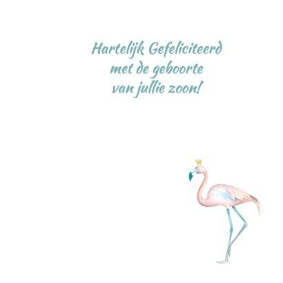 Felicitatie jongen flamingo foto 3