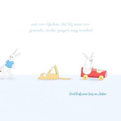 Felicitatie - Kleine jongen met konijntje 3