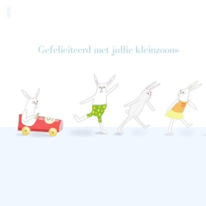 Felicitatie - Kleine jongens met konijntjes 2