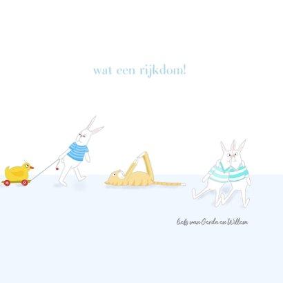 Felicitatie - Kleine jongens met konijntjes 3
