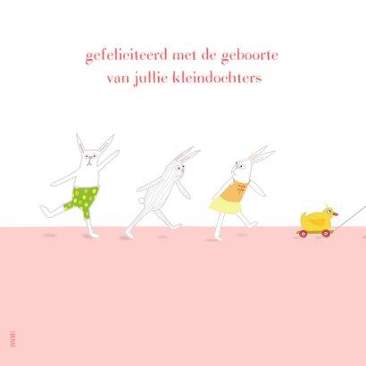 Felicitatie - kleine meisjes met konijntje 2