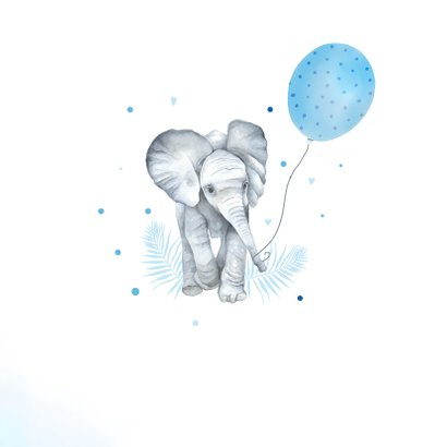 Felicitatie kleinkind jongen olifantje ballon 2