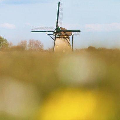 Felicitatie landschap met molen 2