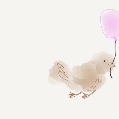 Felicitatie Meisje vogeltjes 2