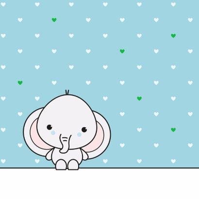 Felicitatie - Schattig olifantje jongen 2