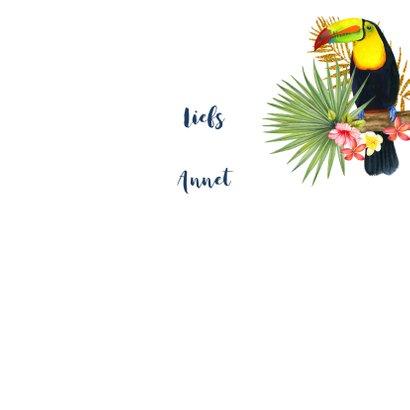 Felicitatie tropische toekanvogel 3