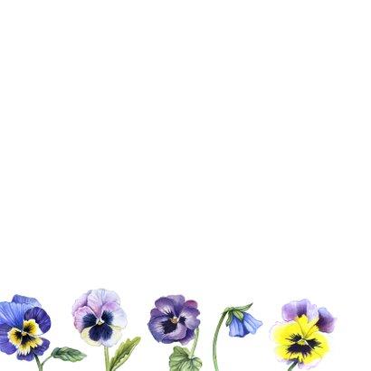 Felicitatie viooltjes 2