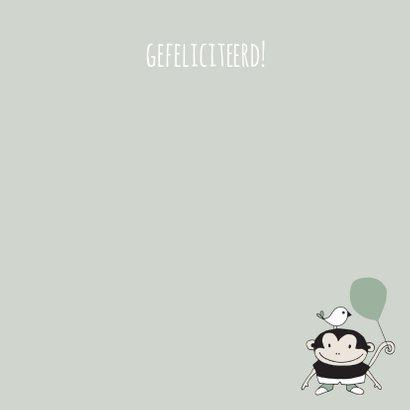 Felicitatie zwanger aapje met ballon groen - MW 3