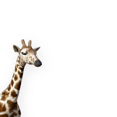 Felicitatiekaart geboorte zoon giraffe Frysk 2