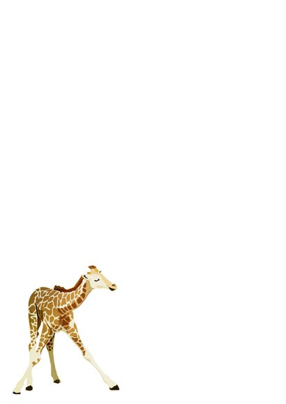 Felicitatiekaart hoera een zoon met giraffes 2